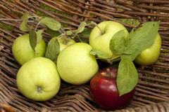 Green apples in a basket Royalty Free Stock Image