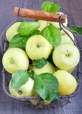 Green apples. In a basket Stock Images