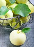 Green apples. In a basket Stock Photography