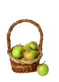 Green Apples In A Basket Over White. Isolated apples and basket Royalty Free Stock Photography