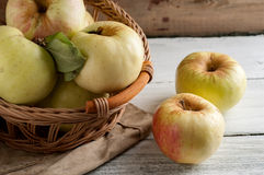 Green Apples. In a basket on the table Royalty Free Stock Photos