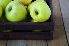 Green apples in crate Stock Photography