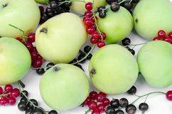 Green apples with currant Royalty Free Stock Image
