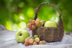 Green apples and grapes with old basket. Stock Images