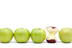 Green apples with an individual eaten red apple Royalty Free Stock Photography