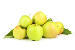 Green apples isolated on white. Stock Images