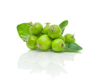 Green apples and leaves on a white background Stock Photo
