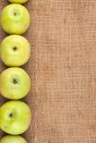Green apples lie on sackcloth Stock Image