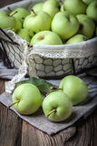 Green apples in a metal basket. Royalty Free Stock Photo