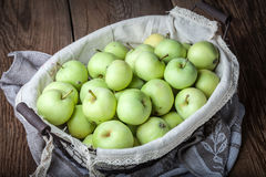 Green apples in a metal basket. Royalty Free Stock Photos
