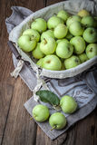 Green apples in a metal basket. Royalty Free Stock Image