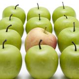 Green apples with a red one Royalty Free Stock Image