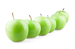 Green apples in row. On white background stock image