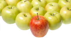 Green apples and single red apple. On white background stock photos