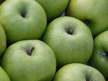 Green apples. Stock of delicious green apples Stock Image