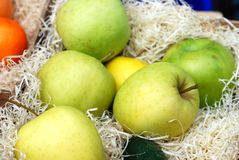 Green apples and tangerines Stock Image