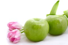 Green apples and tulips Stock Image
