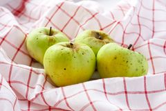 Green apples. On a white napkin Stock Photography