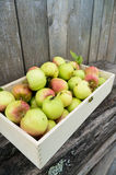 Green apples in wooden box Stock Photo