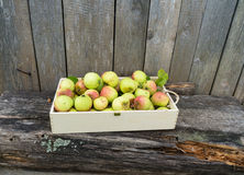 Green apples in wooden box Stock Images