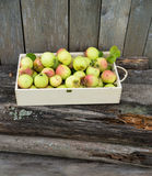 Green apples in wooden box Royalty Free Stock Photography