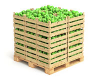 Green apples in wooden crates Stock Photo