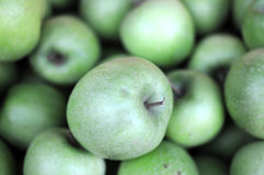 Green appples Royalty Free Stock Photography