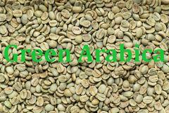 Green Arabica coffee beans. No roasted green arabica coffee beans, texture, background with written words Green Arabica Royalty Free Stock Photography