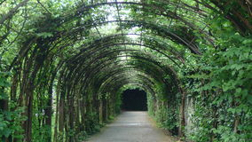 Green arch alley Stock Photo