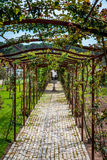 Green arch - alley, France. Alley in south of France, green decoration, plantation Stock Photos