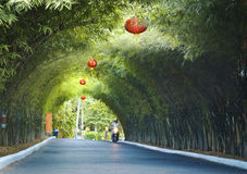 Green arch with Chinese red lanterns. Green perspective arch with Chinese red lanterns (Thailand Royalty Free Stock Photos