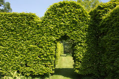 Green arch in garden royalty free stock photo