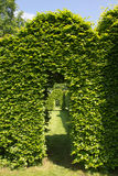 Green arch in garden Royalty Free Stock Photography