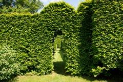 Green arch in garden Stock Photos