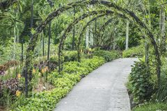 Green arched pathway Stock Images