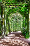 Green archway in a garden. Stock Image