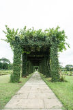 Green archway in a garden. Royalty Free Stock Images