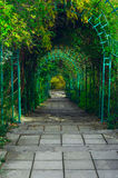 Green archway Stock Photo