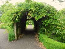 Green Archway Royalty Free Stock Photos