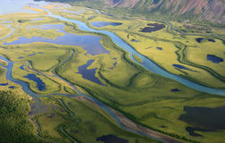 Green, arctic delta Stock Images