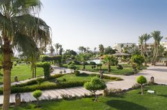 Green area of the hotel. By the sea royalty free stock photo