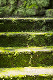 Green areas. Old place decorated in green areas Royalty Free Stock Image
