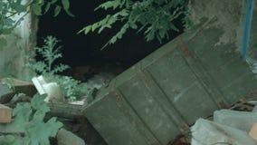 Green army box lies among the dump. Panorama stock footage