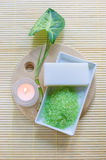 Green aromatic salt Stock Images