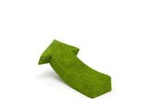 Green arrow. Abstract 3d image of rising grass arrow Stock Photos