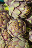 Green artichokes at the farmers market Stock Images