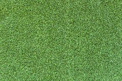 Green artificial Astroturf for pattern and background. Royalty Free Stock Images