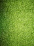 Green artificial grass Royalty Free Stock Images