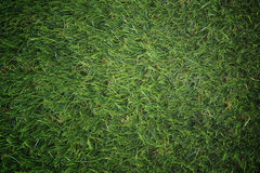 Green artificial grass useful for background Stock Photography