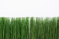 Green artificial grass on a white background. Thin grass in a bright pot royalty free stock photo
